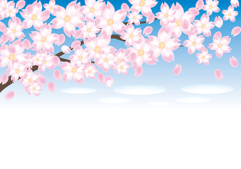 벚꽃 나무와 푸른 하늘