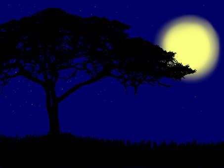 The savanna month