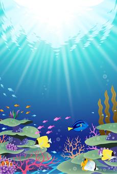 Shining blue coral reef landscape