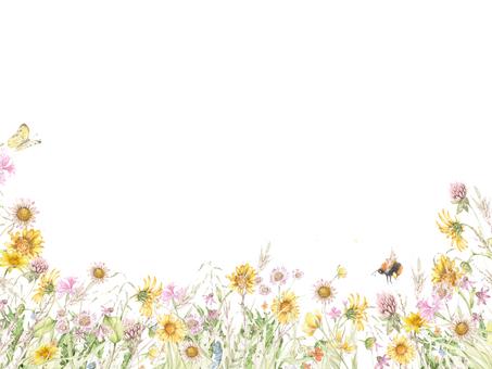 花框架105  - 不顯眼的領域花花框架