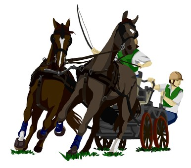 Carriage competition