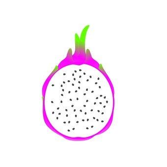 드래곤 과일