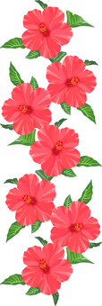 Line material of red hibiscus