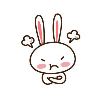 Mad Rabbit (illustration of emotions and pleasures)