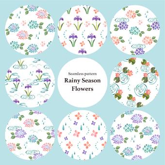 Rainyu pattern