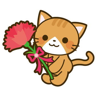 Cat and carnation