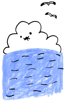 Sea cloud sea gull