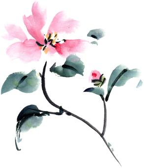 Haiga _ Satake flower