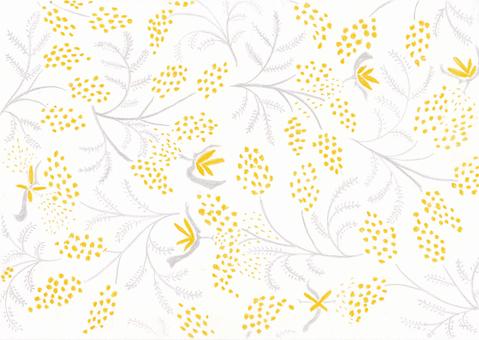 Mimosa pattern