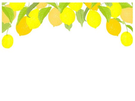 レモンフレーム2