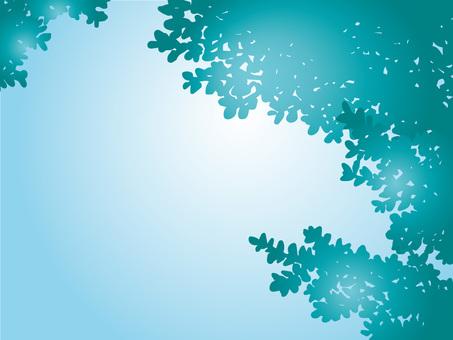 Summery tree shadow