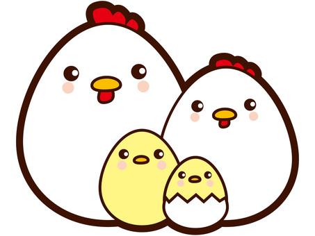 Egg type chicken family