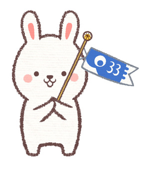 Carp streamer rabbit