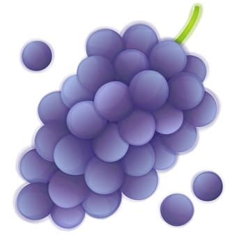 Blue purple grapes
