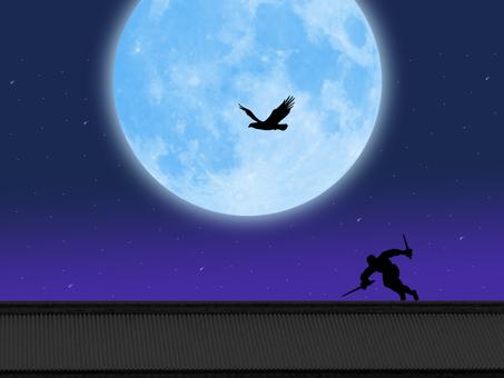 Full moon and ninja