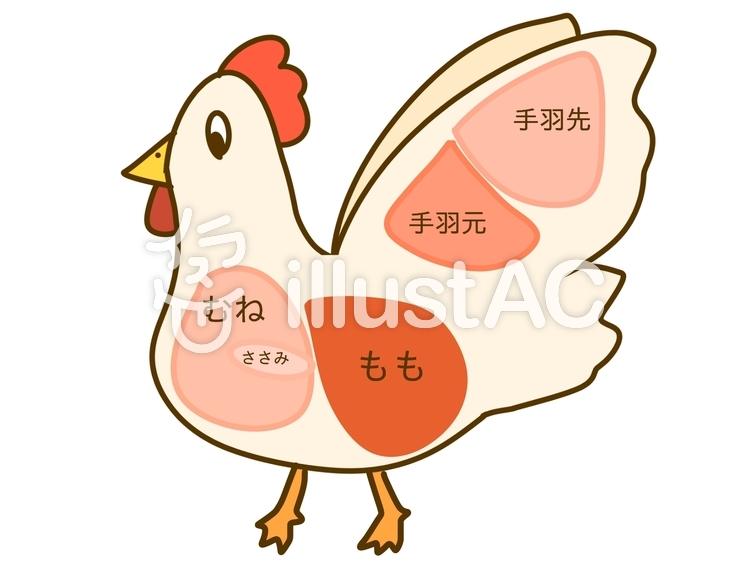 鶏 部位イラスト No 1119547無料イラストならイラストac