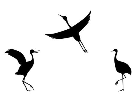 Cranes cranes silhouette set