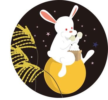 Rabbit at the Tsunami