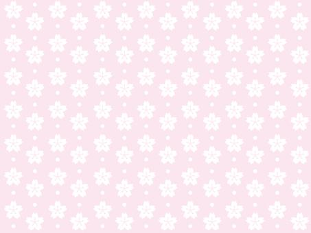 Sakura Wallpaper 2