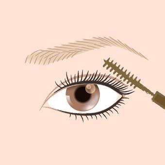 Makeup _ Eyelash