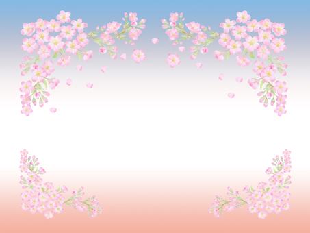 벚꽃 만개 카드 ★ 0391-C