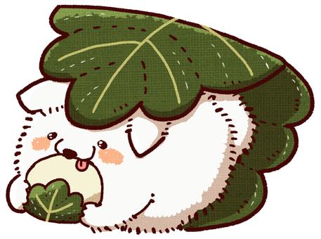 Kashiwochi Pomeranian