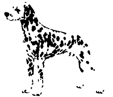 Dalmatian (PNG transmission)