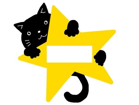 Black cat star type name box