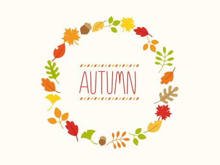 Fall Material _ 2