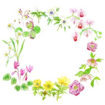 Watercolor Flower Frame - Winter -