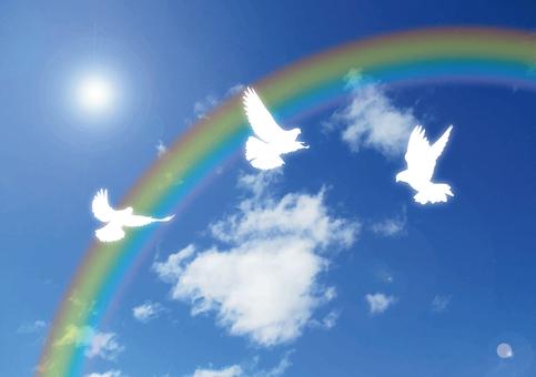 Dove and Rainbow