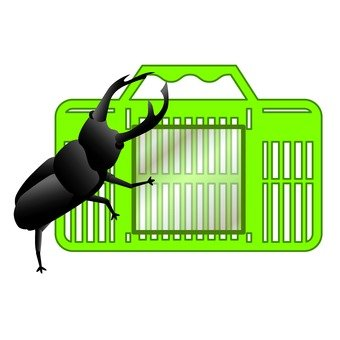 Stag beetle and bug basket