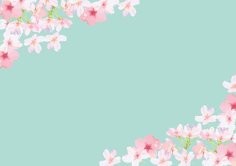 櫻花框架背景
