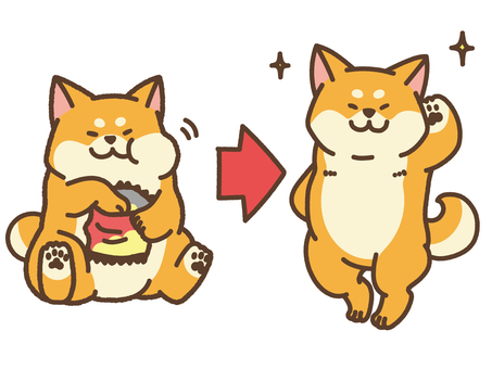 Diet Before After Shiba