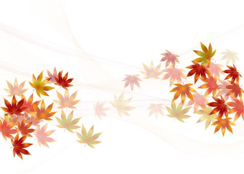 Autumn leaves 314