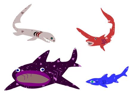 Deep sea shark