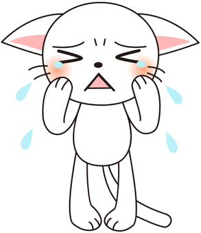 Crying white cat
