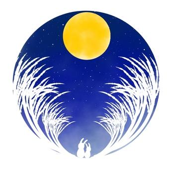 Full moon night, Susuki Tousagi, white