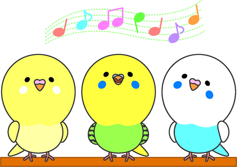 Singing parakeet and friend