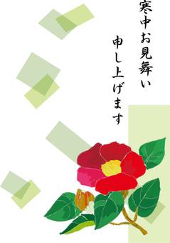 Troubled camellia camellia