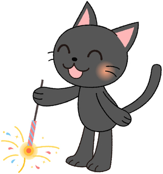 Black cat with fireworks