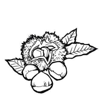 Chestnut black and white version