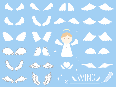 Angel's wing (wing) set