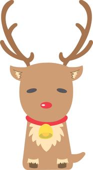 【Animals】 Reindeer 2