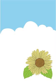 Summer sky sunflower postcard