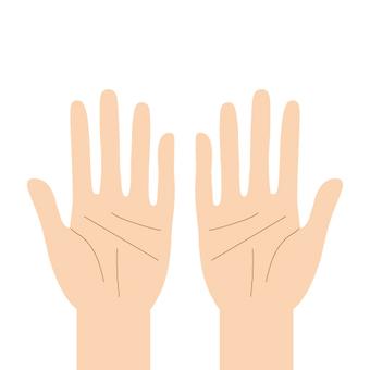 Hands (both hands)