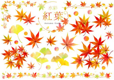 Autumn 246