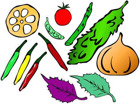 Vegetable color set 170819-05