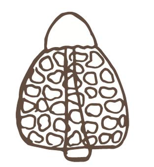 버섯 -32