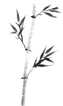 대나무 잉크